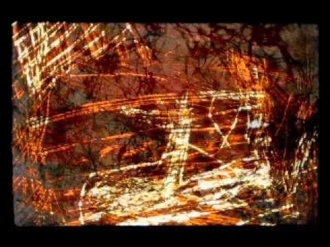 lémur - 1111 (fragmento)