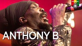 Anthony B Live at Rotterdam Reggae by Night 2019
