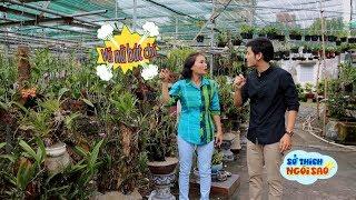 SỞ THÍCH NGÔI SAO - Cùng DV Trần Bích Hằng thăm vườn lan
