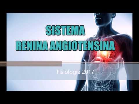 Estudio de caso de la enfermedad hipertensiva con respuestas