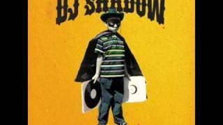 Building Steam With A Grain Of Salt (Dj Shadow Remix)