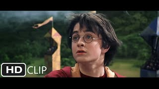 Rogue Bludger | Harry Potter And The Chamber Of Secrets