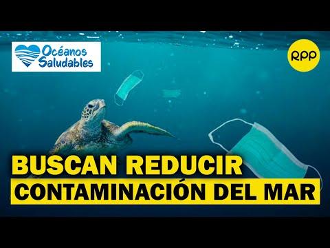 'Océanos Saludables': una campaña que busca reducir la contaminación para salvar la vida marina