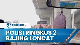 Seusai Video Muatan Truk Dicuri Viral, Polisi Berhasil Ringkus 2 Bajing Loncat di Cakung