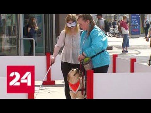Москвичи провели день с собакой-поводырем — Россия 24