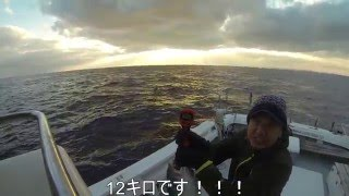 電動ジギングで鰤10kgオーバーを狙って釣る。壱岐、七里。ステンレスジグが何故ここまで釣れるのか!