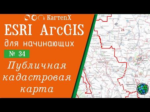 ArcGIS 10 - № 34. Работа с Публичной кадастровой картой.