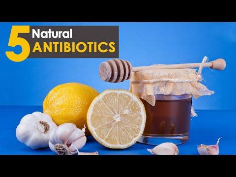 Top 5 powerful Natural Antibiotics | Healthfolks.com