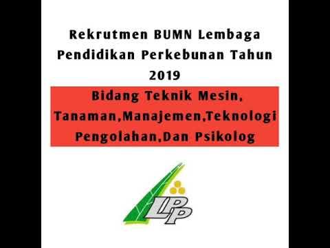 Rekrutmen BUMN Lembaga Pendidikan Perkebunan Tahun 2019 - Lowongan Kerja Informasi