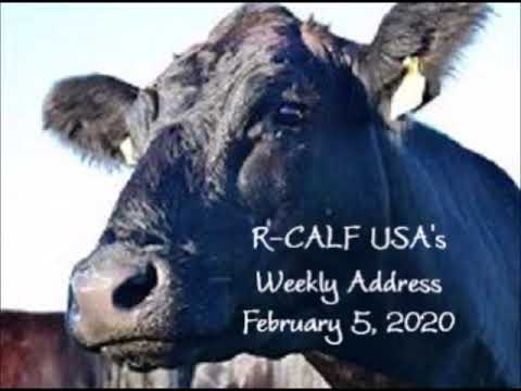 R-CALF USA Will Challenge Ruling in Checkoff Case; Progress Already Made in Reforming Checkoff