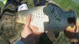 Рыбалка в калач-на-дону волгоградская область