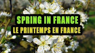 Discover Spring in France