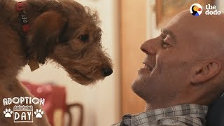 Airedale Puppy Hits The Jackpot With Her New Family | The Dodo Adoption Day