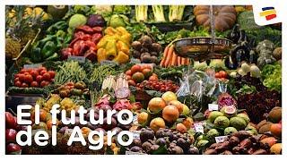 El futuro del Agro - Agroindustria | Bancolombia