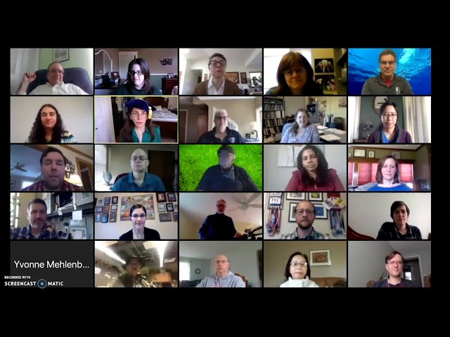 Zoom meeting participants