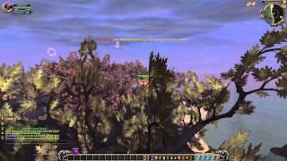 Blood of Alysrazor (Darkmoon Achievements)
