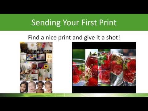 Setting up your Mutoh printer with Flexi Rip Software