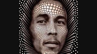 Bob Marley ~ Rebel Music at 432hz