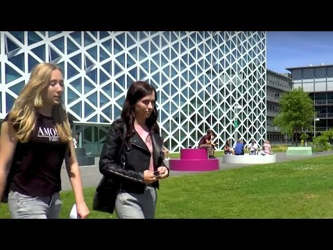 Windesheim University of Applied Sciences video