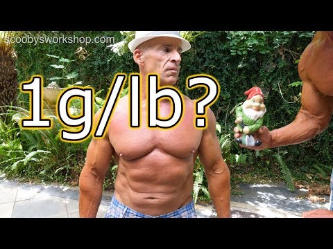 mp4 Bodybuilding How Much Protein, download Bodybuilding How Much Protein video klip Bodybuilding How Much Protein