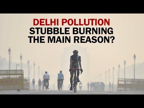 Stubble Burning Chokes Delhi | NewMo