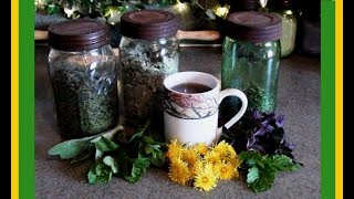 Herbs For Teas: Harvesting And Drying