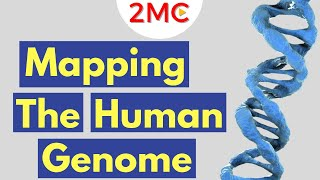 The Human Genome Project | A Brief Overview