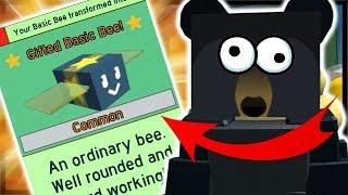 SUPER *OP* GIFTED BASIC BEE STAR TREAT!   Roblox Bee Swarm Simulator