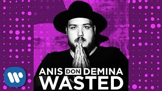 Anis don Demina - Wasted (Official Audio)