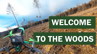 WELCOME TO THE WOODS - FPV #shorts