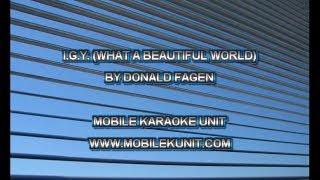 Donald Fagen - I.G.Y. (What a Beautiful World) [Karaoke]