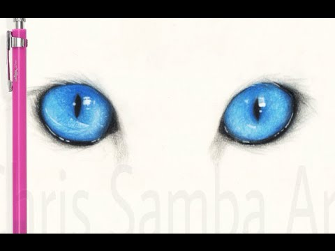 Drawing Realistic Blue Cat Eyes