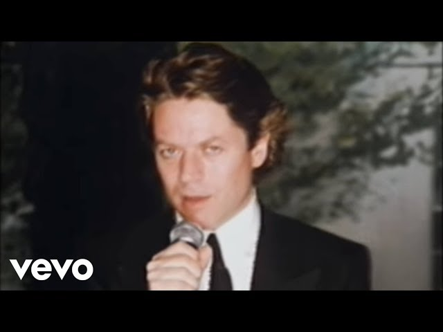 I Didn't Mean To Turn You On  - Robert Palmer