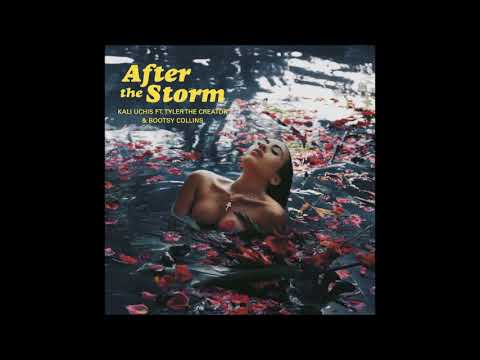 Kali Uchis - After The Storm ft. Tyler, The Creator, Bootsy Collins (Instrumental Loop)