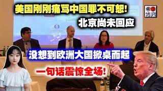 美国刚刚斥责中国罪不可恕!北京尚未回应,没想到欧洲大国掀桌而起,一句话震惊全场!