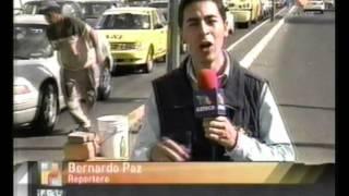 A 3 años de la pérdida del Laurel de la India (Bernardo Paz)