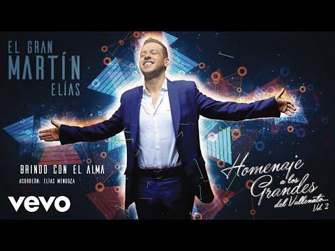 Brindo Con El Alma (cover Audio)