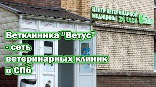 """Ветклиника """"Ветус"""" - сеть ветеринарных клиник в СПб"""