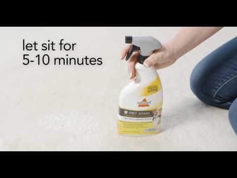 Ace Carpet Cleaner 6 In One Formula Msds Carpet Vidalondon