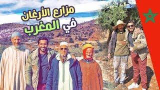 المكان الوحيد في العالم لزراعة الارغان في #المغرب
