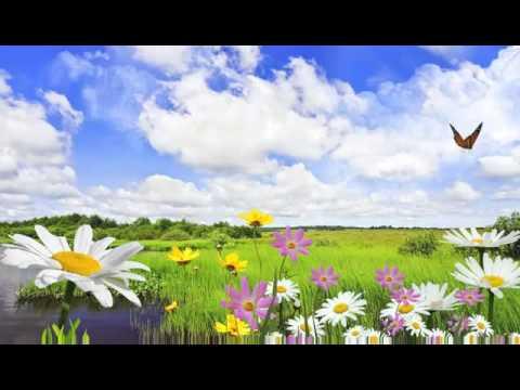 paisajes naturales para fondo de pantalla del monitor