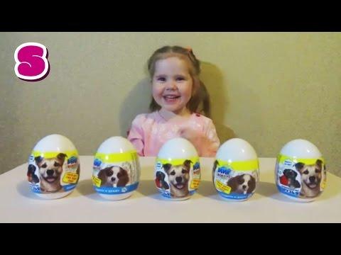 Четвероногие друзья распаковка больших яиц Мир вокруг