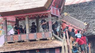 preview picture of video 'ma'pasonglo in Tana Toraja'