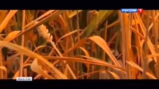 ВАЖНО: Украина полигон для ТРАНСГЕНОВ Monsanto Company