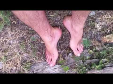 Les préparations pour le traitement contre la varicosité des veines sur les pieds