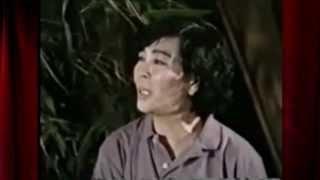 Quán Nửa Khuya-Minh Cảnh-Trọng Hữu