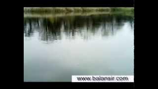 Рыбалка в малой рязани самарской области