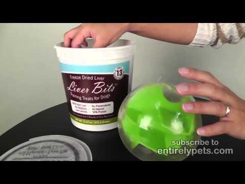 Planet Dog Mazee - Green Video