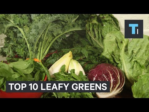 The 10 healthiest leafy greens you should be putting in your salad