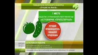 Выращивание овощей на Ямале дело рискованное, но прибыльное